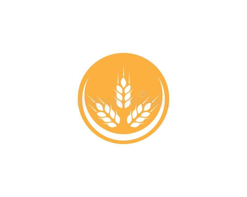 Πρότυπο λογότυπων σίτου διανυσματική απεικόνιση