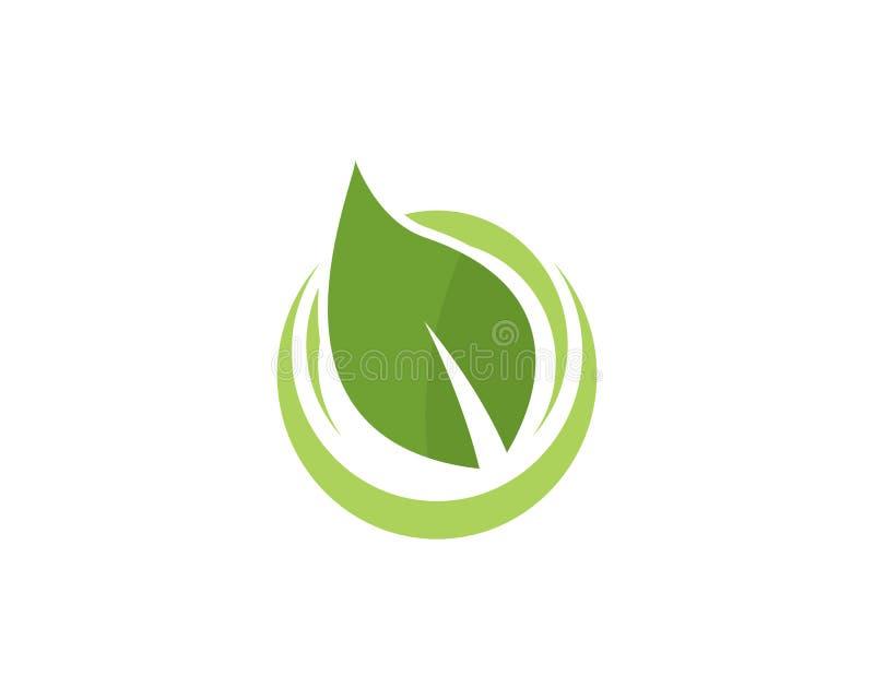 Πρότυπο λογότυπων φύλλων δέντρων Eco ελεύθερη απεικόνιση δικαιώματος