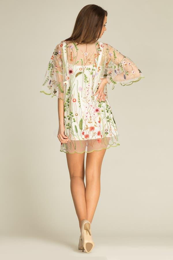 Πρότυπο με το όμορφο σώμα που φορά το φόρεμα στην πίσω πλευρά στοκ εικόνα με δικαίωμα ελεύθερης χρήσης