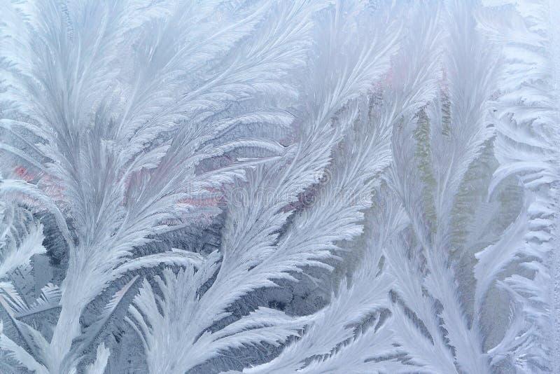 Πρότυπο παγετού παραθύρων στο γυαλί στοκ φωτογραφίες με δικαίωμα ελεύθερης χρήσης