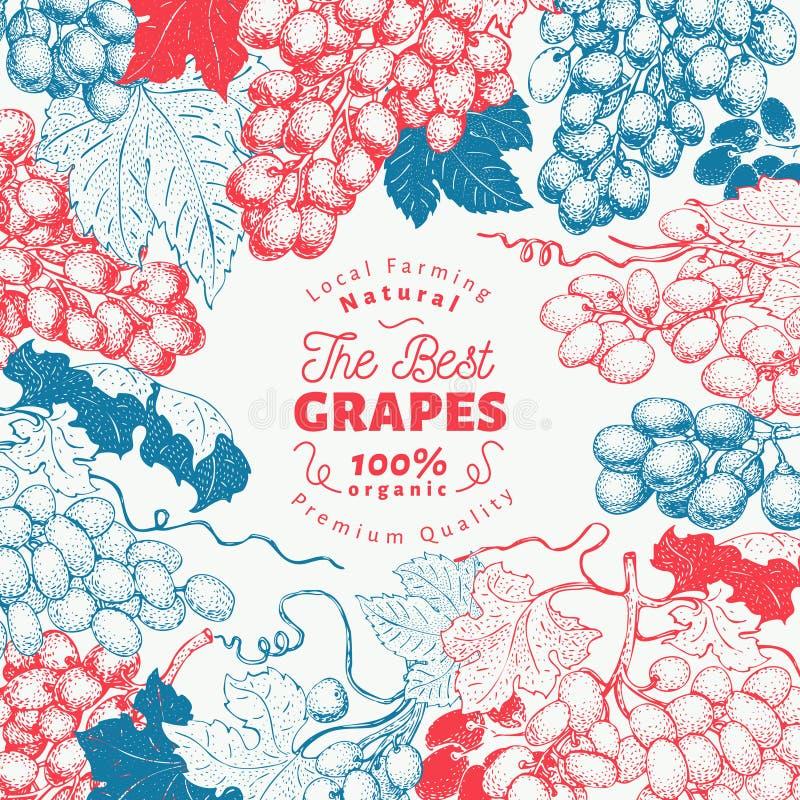Πρότυπο πλαισίων μούρων σταφυλιών Συρμένη χέρι διανυσματική απεικόνιση φρούτων Χαραγμένο εκλεκτής ποιότητας βοτανικό υπόβαθρο ύφο ελεύθερη απεικόνιση δικαιώματος
