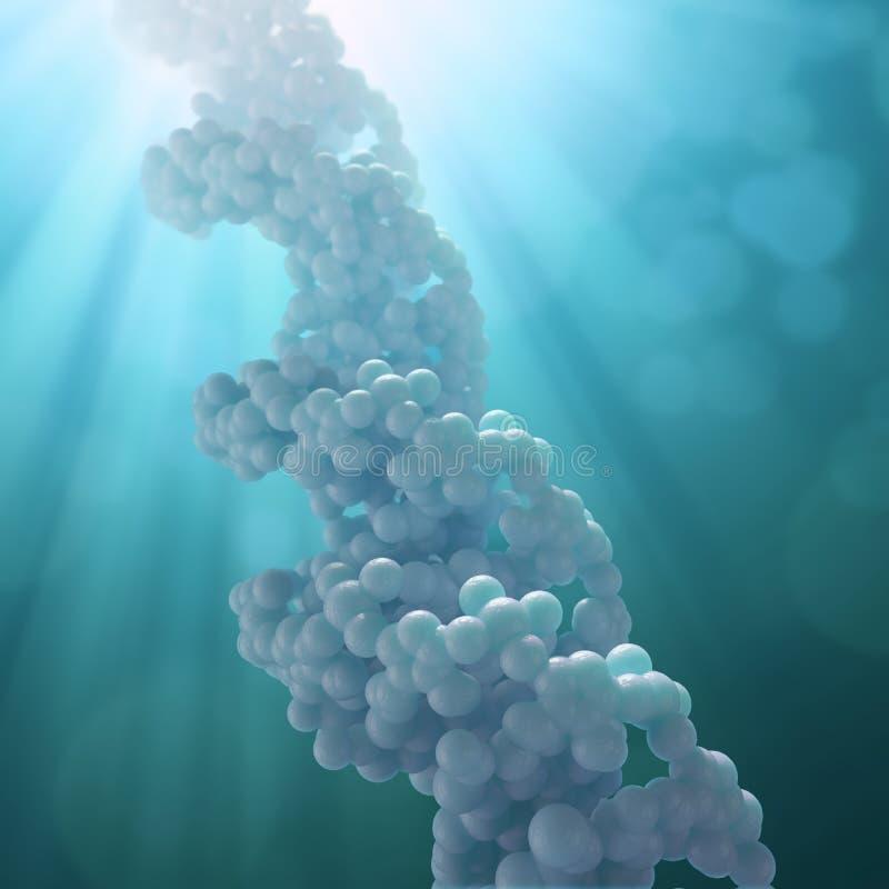 πρότυπο σκέλος DNA απεικόνιση αποθεμάτων