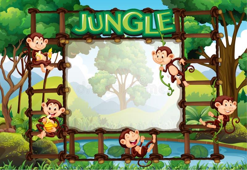 Πρότυπο συνόρων με τους πιθήκους στη ζούγκλα απεικόνιση αποθεμάτων