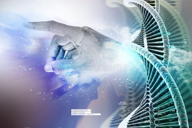 Πρότυπο της στριμμένης αλυσίδας και του χεριού DNA χρωμίου ελεύθερη απεικόνιση δικαιώματος