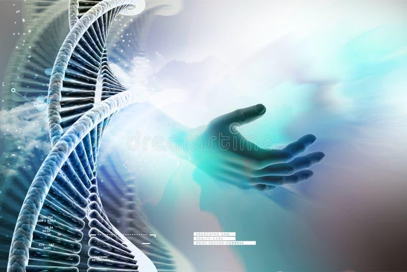 Πρότυπο της στριμμένης αλυσίδας DNA χρωμίου διανυσματική απεικόνιση