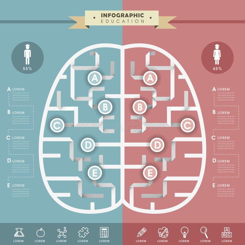 Πρότυπο Infographic εκπαίδευσης διανυσματική απεικόνιση