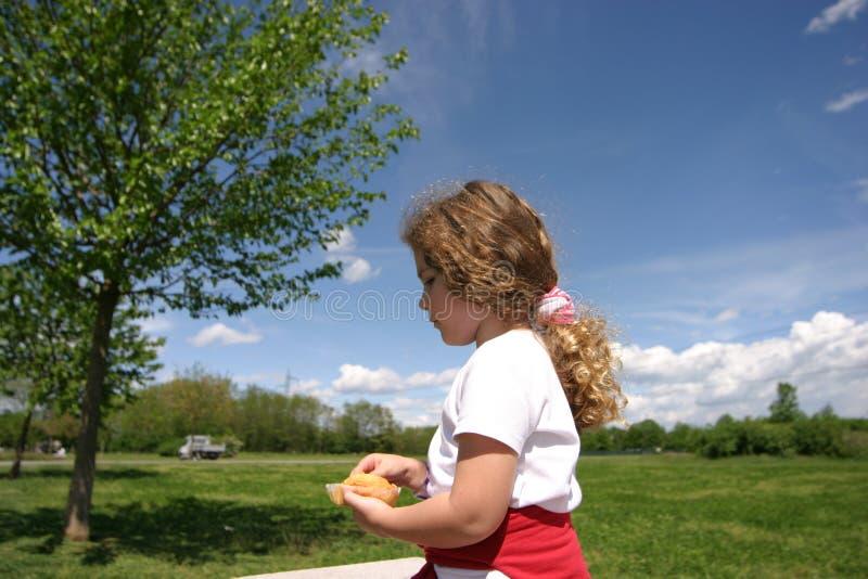 πρόχειρο φαγητό πάρκων στοκ εικόνες