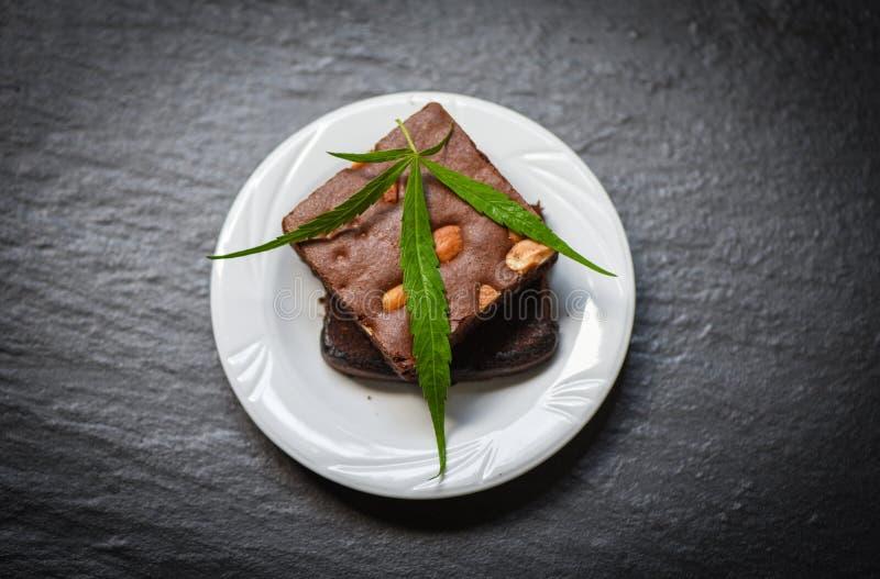 Πρόχειρο φαγητό τροφίμων καννάβεων για την υγεία - brownies με το χορτάρι φύλλων μαριχουάνα στο άσπρο σκοτεινό υπόβαθρο πιάτων στοκ εικόνα