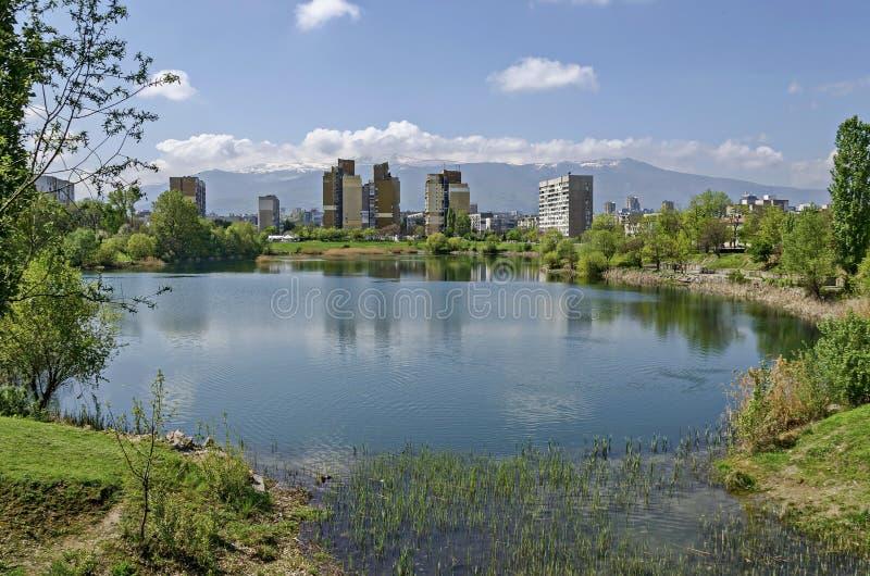 Πρόωρος πράσινος, ξηρός κάλαμος άνοιξης ή βιασύνη και σπίτι σε μια λίμνη ομορφιάς στην κατοικημένη περιοχή Drujba στοκ εικόνες με δικαίωμα ελεύθερης χρήσης