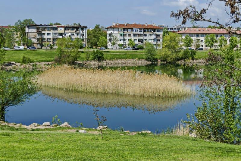 Πρόωρος πράσινος, ξηρός κάλαμος άνοιξης ή βιασύνη και σπίτι σε μια λίμνη ομορφιάς στην κατοικημένη περιοχή Drujba στοκ φωτογραφία