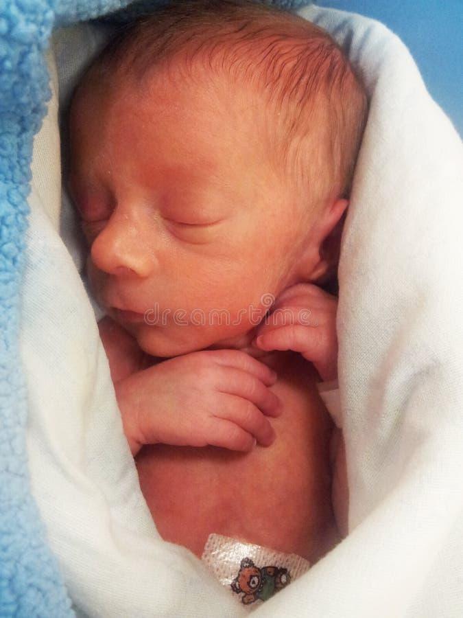 Πρόωρο μωρό στοκ φωτογραφία