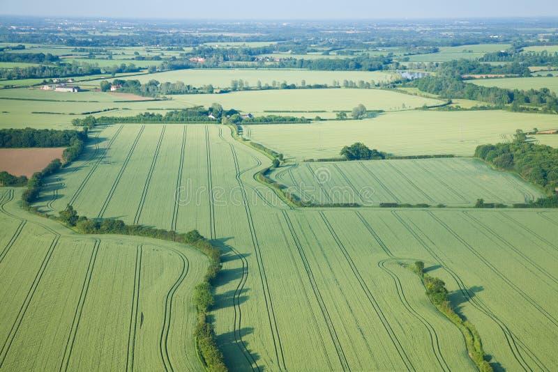 πρώιμα πεδία πράσινα πέρα από τ&e στοκ φωτογραφία με δικαίωμα ελεύθερης χρήσης