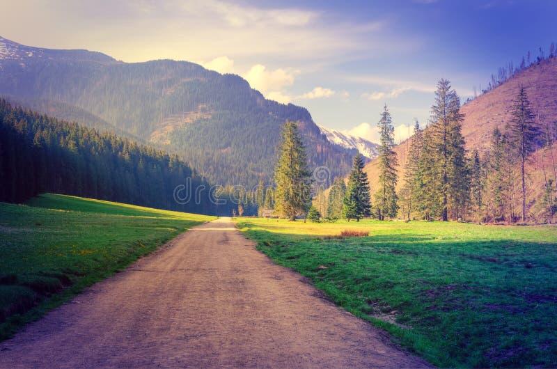 πρώιμη άνοιξη βουνών τοπίων στοκ φωτογραφία με δικαίωμα ελεύθερης χρήσης