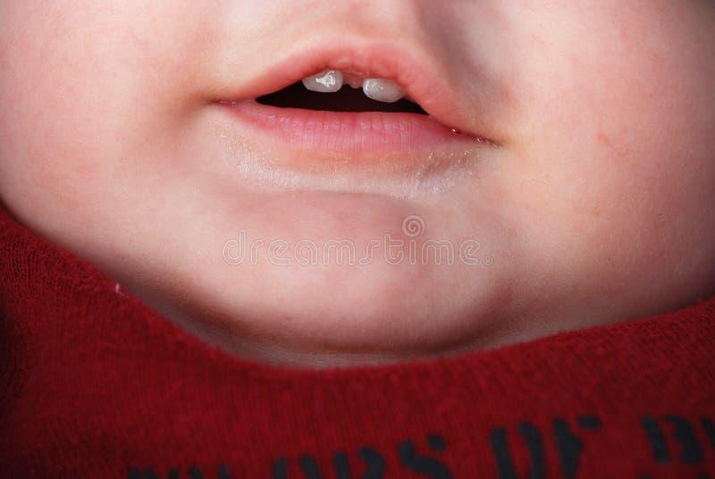 Πρώτα δόντια στοκ φωτογραφία με δικαίωμα ελεύθερης χρήσης