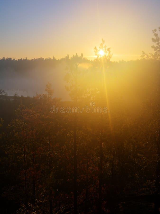 Πρώτες ακτίνες του ήλιου στοκ εικόνες