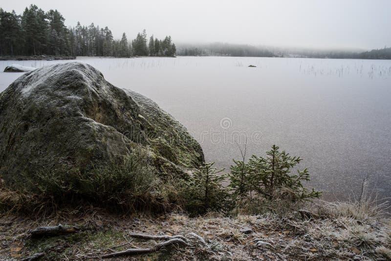 Πρώτοι πάγος και παγετός στοκ εικόνες