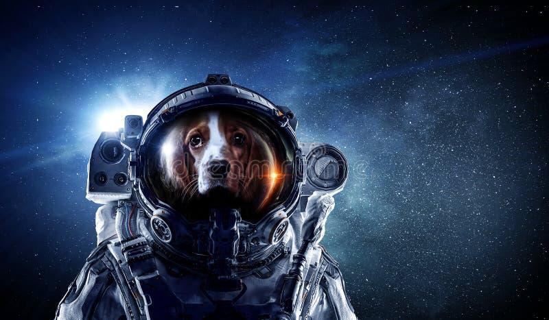 Πρώτο ταξίδι στο διάστημα Μικτά μέσα στοκ φωτογραφίες
