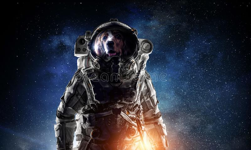 Πρώτο ταξίδι στο διάστημα Μικτά μέσα στοκ φωτογραφίες με δικαίωμα ελεύθερης χρήσης