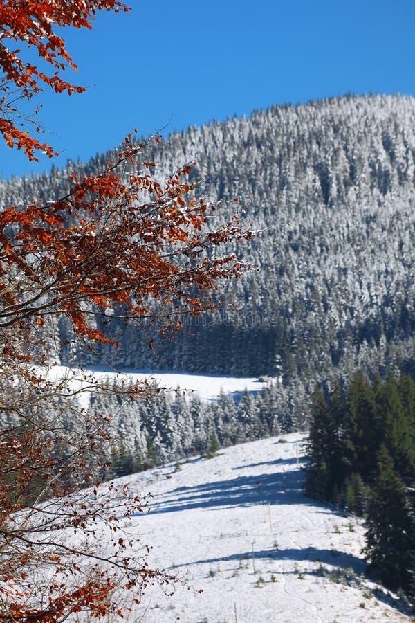 πρώτο χιόνι βουνών στοκ φωτογραφία με δικαίωμα ελεύθερης χρήσης
