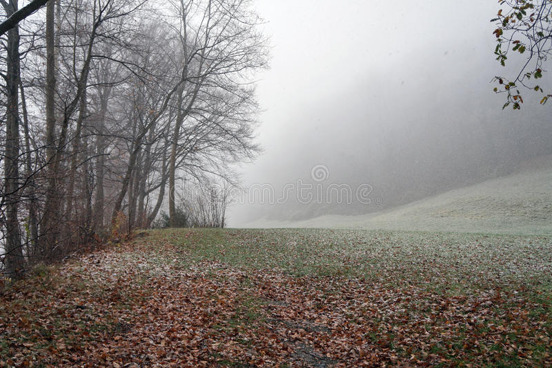 Πρώτο χιόνι σε Liectenstein στοκ εικόνες με δικαίωμα ελεύθερης χρήσης
