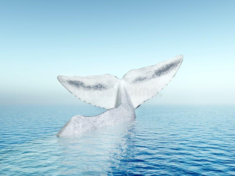 Πτερύγιο ουρών μιας φάλαινας σπέρματος διανυσματική απεικόνιση