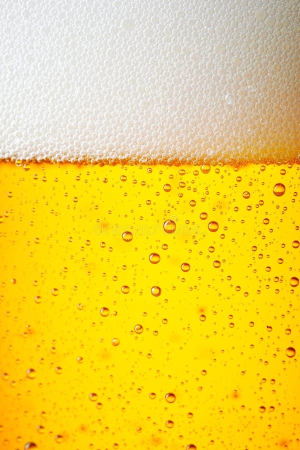Πτώσεις ενός πάγου - κρύα πίντα της μπύρας στοκ φωτογραφίες