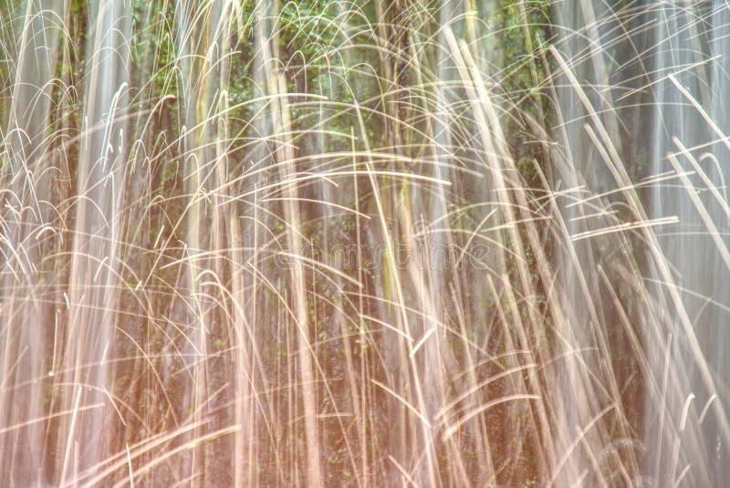 Πτώσεις νερού ραντίσματος από μια φυσική πηγή Παύση της μετακίνησης στοκ εικόνα με δικαίωμα ελεύθερης χρήσης