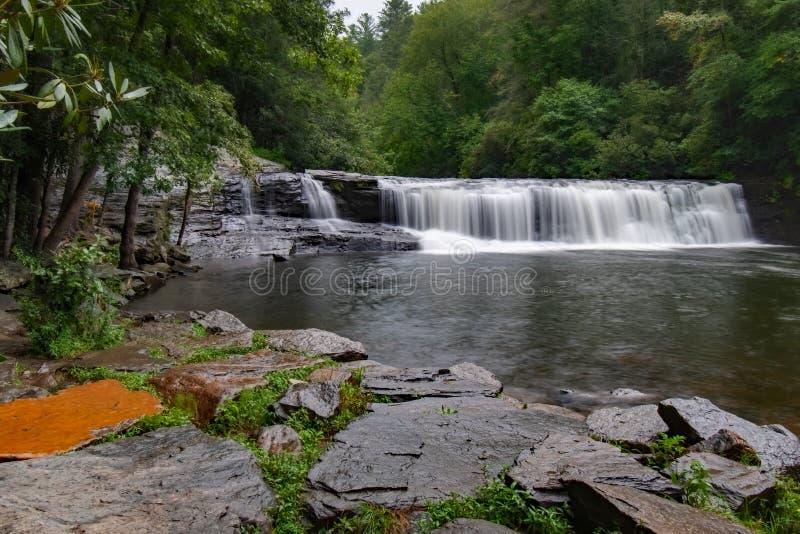 Πτώσεις στο δάσος της Dupont στοκ εικόνα με δικαίωμα ελεύθερης χρήσης