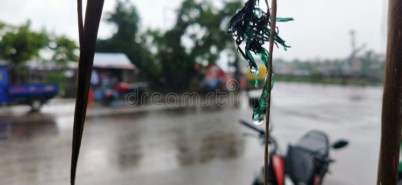 Πτώσεις της βροχής στοκ εικόνα με δικαίωμα ελεύθερης χρήσης