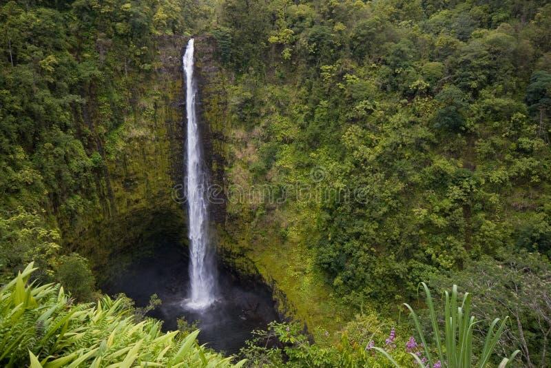 πτώσεις Χαβάη akaka στοκ εικόνα