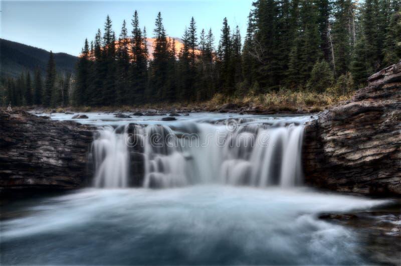 Πτώσεις Allberta ποταμών προβάτων στοκ φωτογραφίες με δικαίωμα ελεύθερης χρήσης