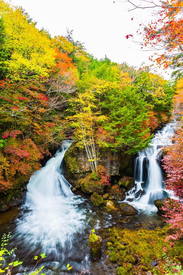 Πτώσεις Ryuzu στην εποχή φθινοπώρου σε Nikko, Ιαπωνία στοκ εικόνες