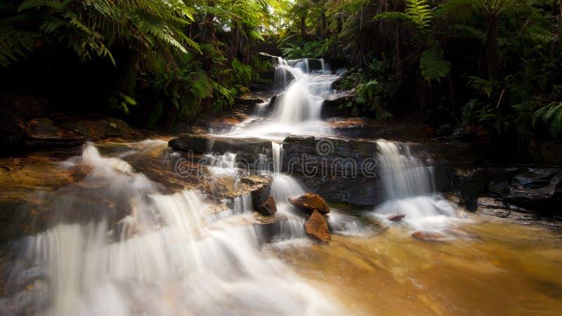 Πτώσεις Wentworth - Katoomba, μπλε βουνά στοκ φωτογραφία