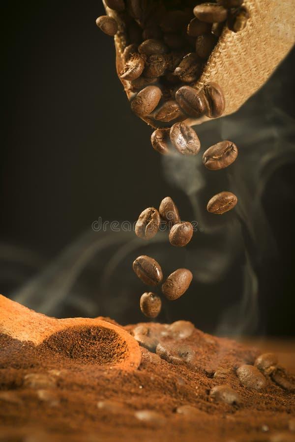 πτώση καφέ φασολιών στοκ φωτογραφίες με δικαίωμα ελεύθερης χρήσης