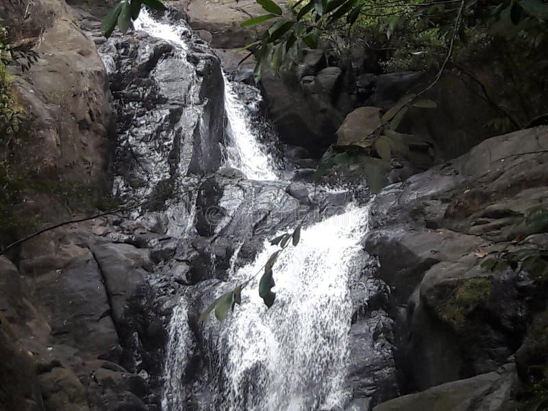 Πτώση νερού στη Σρι Λάνκα στοκ φωτογραφίες με δικαίωμα ελεύθερης χρήσης