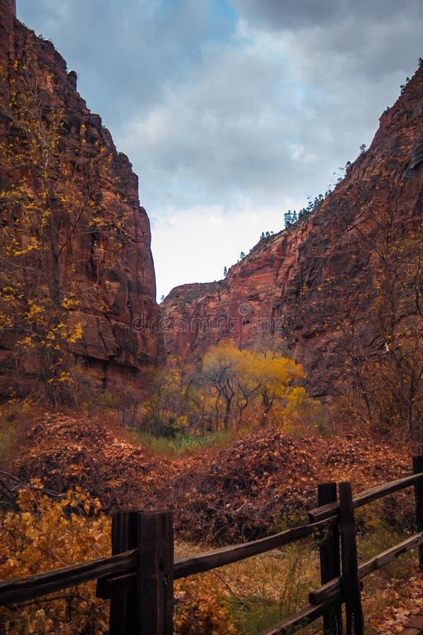 Πτώση στο εθνικό πάρκο Zion στοκ φωτογραφίες με δικαίωμα ελεύθερης χρήσης