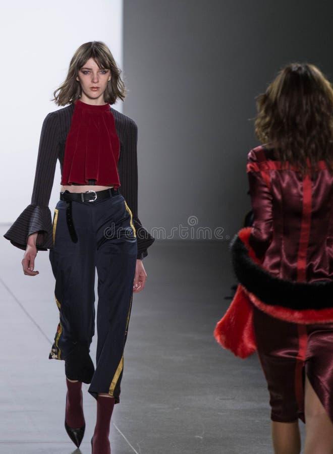 Πτώση της Vivienne HU/χειμερινή συλλογή κατά τη διάρκεια της εβδομάδας μόδας της Νέας Υόρκης στοκ φωτογραφία με δικαίωμα ελεύθερης χρήσης