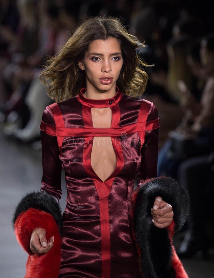 Πτώση της Vivienne HU/χειμερινή συλλογή κατά τη διάρκεια της εβδομάδας μόδας της Νέας Υόρκης στοκ εικόνες