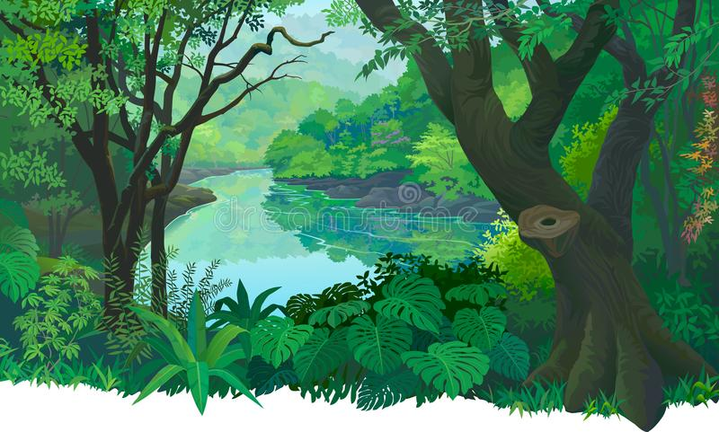 Πυκνό, πράσινο τροπικό δάσος και ένας ρέοντας ποταμός γλυκού νερού ελεύθερη απεικόνιση δικαιώματος