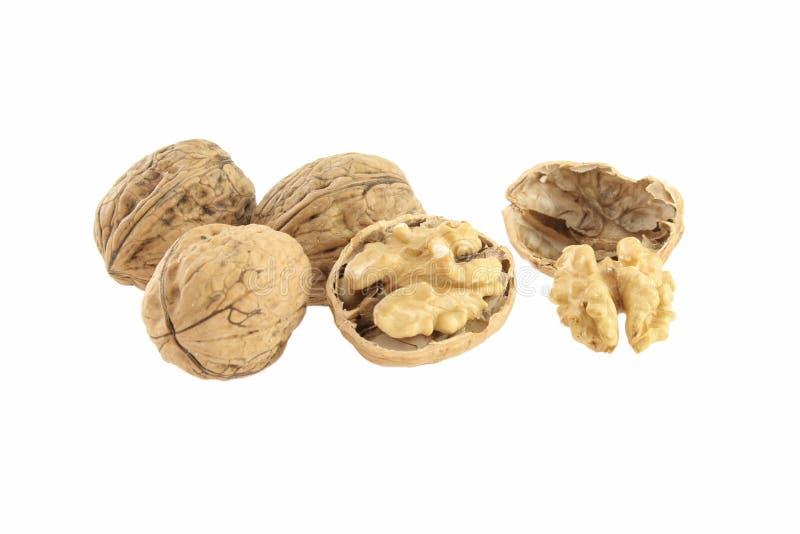 Πυρήνας και σύνολο ξύλων καρυδιάς, που απομονώνονται στο άσπρο υπόβαθρο στοκ φωτογραφία με δικαίωμα ελεύθερης χρήσης