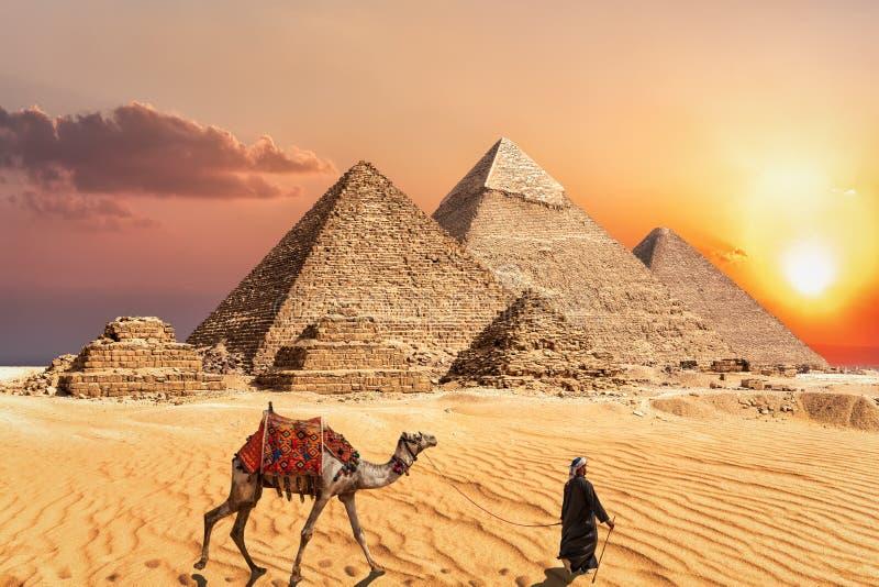 Πυραμίδα Giza σύνθετη στην Αίγυπτο, όμορφη άποψη ηλιοβασιλέματος στοκ φωτογραφία με δικαίωμα ελεύθερης χρήσης