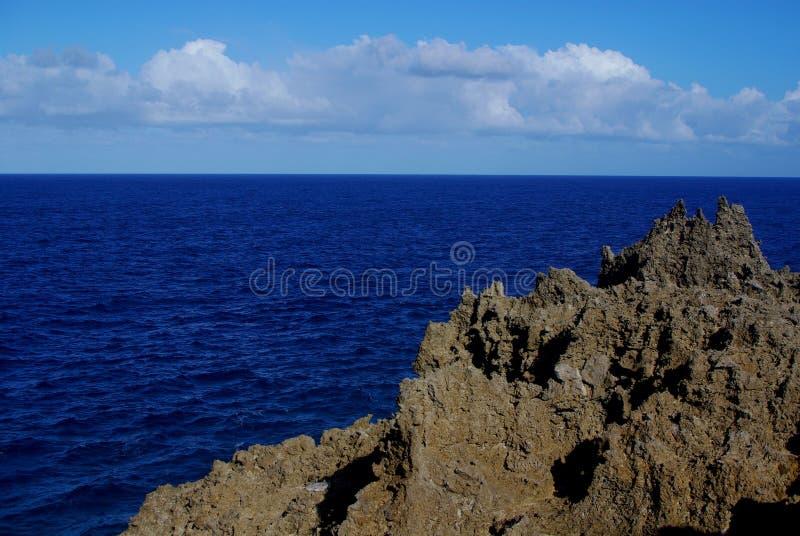 Πυραμίδα κοραλλιών, ωκεάνια επιφυλακή στοκ εικόνες