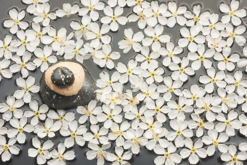 Πυραμίδα στο νερό μεταξύ των λουλουδιών στοκ φωτογραφία