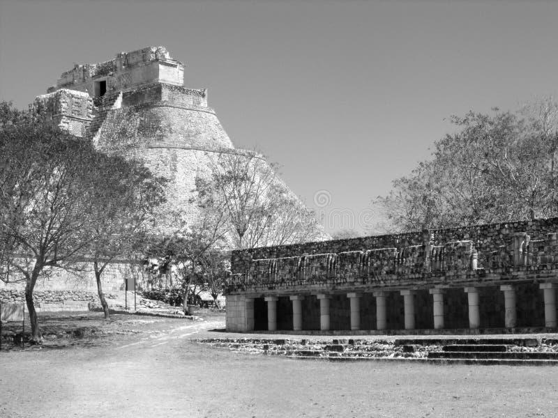 Πυραμίδα των μάγων Uxmal στοκ φωτογραφίες με δικαίωμα ελεύθερης χρήσης