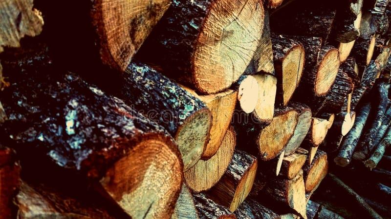 Πυρκαγιά-ξύλα στοκ εικόνα με δικαίωμα ελεύθερης χρήσης
