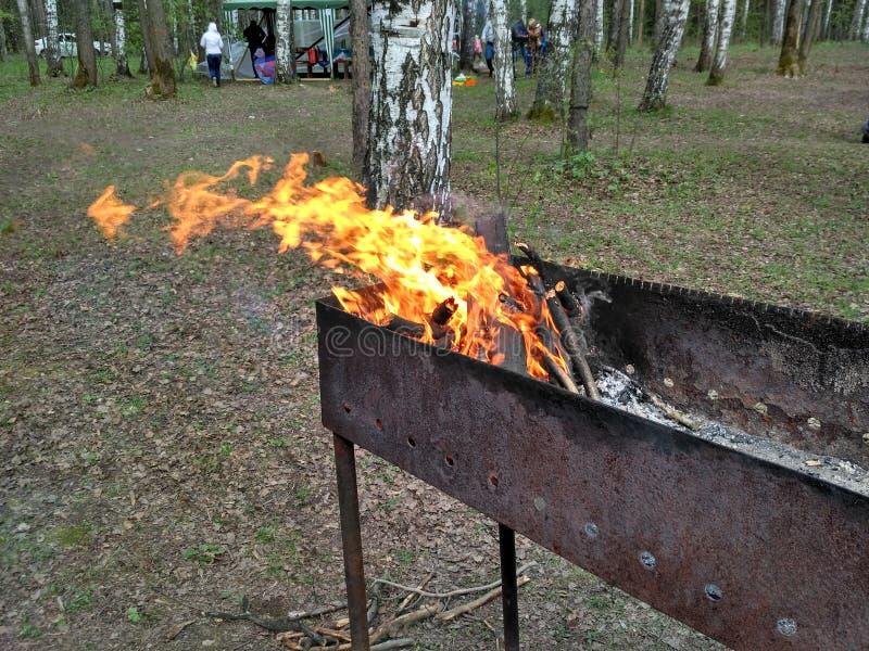 Πυρκαγιά στη σχάρα στοκ εικόνα με δικαίωμα ελεύθερης χρήσης