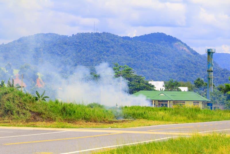 Πυρκαγιά στη χλόη από την οδική πλευρά στοκ εικόνες