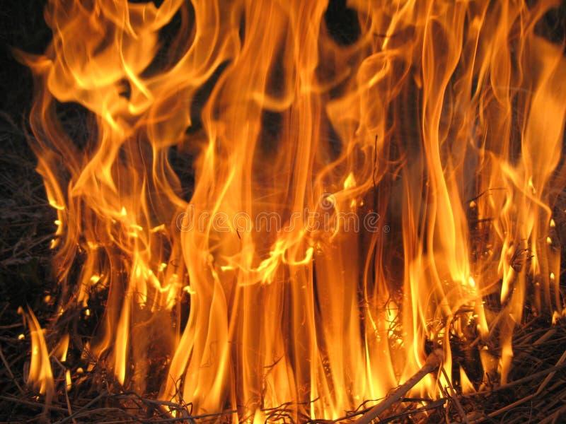 Πυρκαγιά στο πεδίο στοκ φωτογραφίες με δικαίωμα ελεύθερης χρήσης