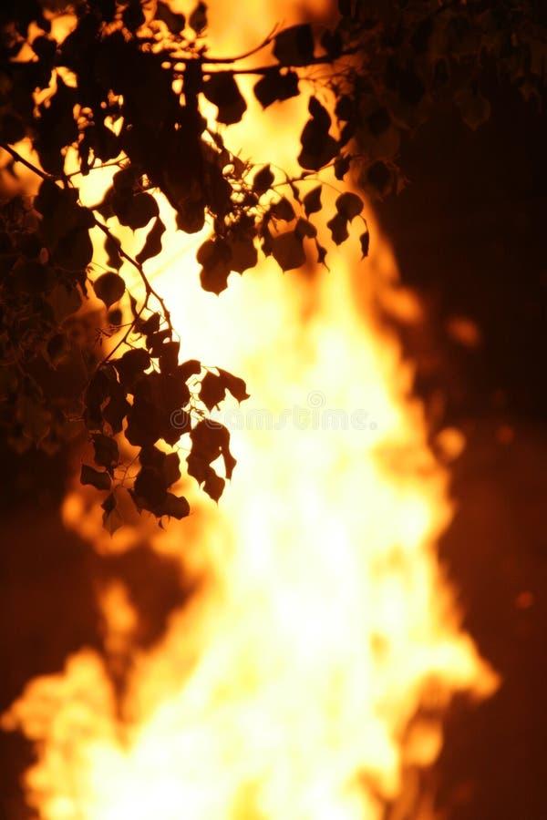 πυρκαγιά στοκ εικόνες με δικαίωμα ελεύθερης χρήσης
