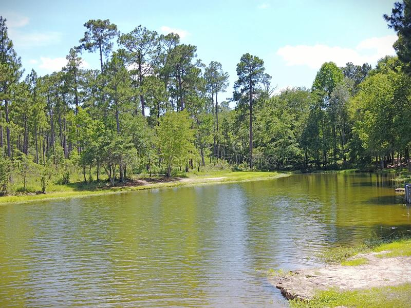 Πυροβολισμός κηφήνων άποψης λιμνών στοκ φωτογραφία με δικαίωμα ελεύθερης χρήσης